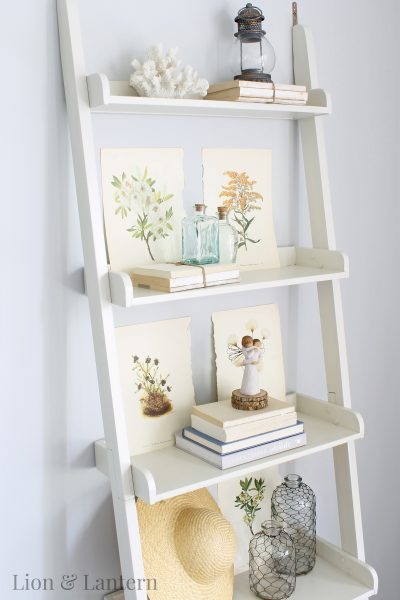 Early Autumn Ladder Shelf at LionAndLantern.com. Coastal decor, coastal farmhouse, budget decor, leaning bookshelf, shelf styling