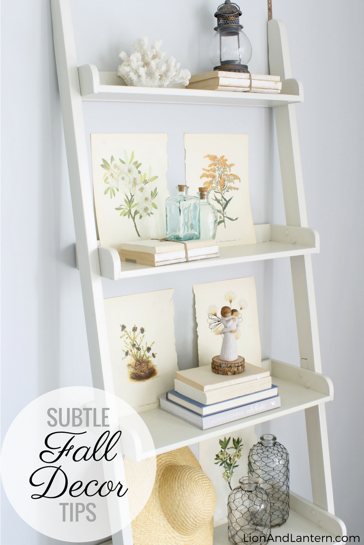 Subtle Fall Decor Tips at LionAndLantern.com. Ladder shelf, coastal decor, coastal farmhouse, budget decor, leaning bookshelf, shelf styling