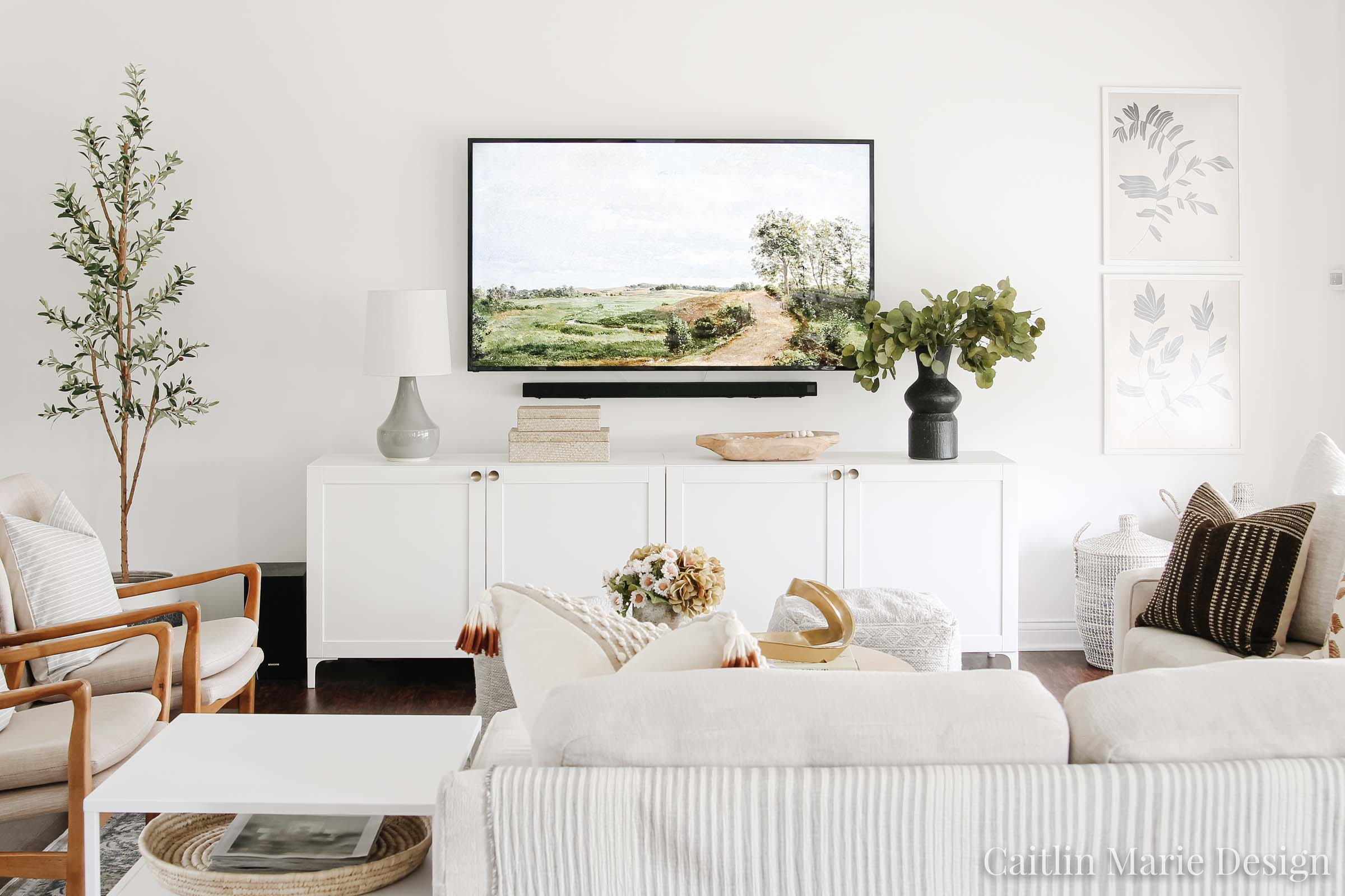 Modern traditional living room, modern media console, olive tree