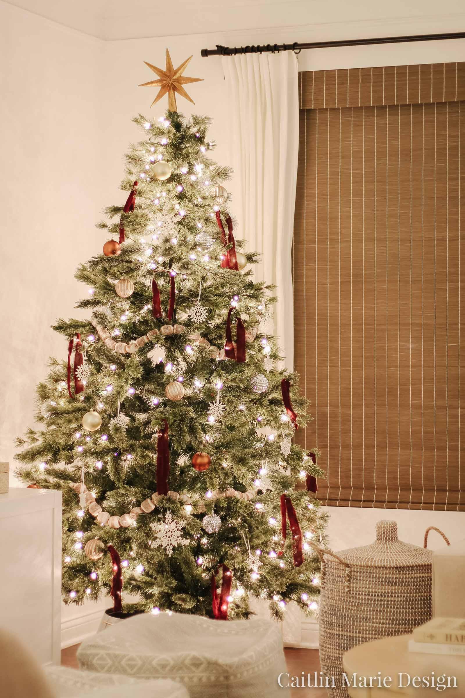 nighttime Christmas tree photo