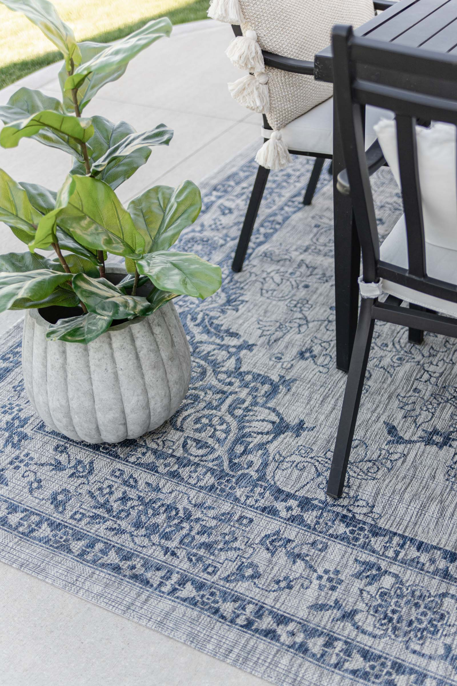 gray scalloped planter with fiddle leaf fig, blue indoor outdoor rug