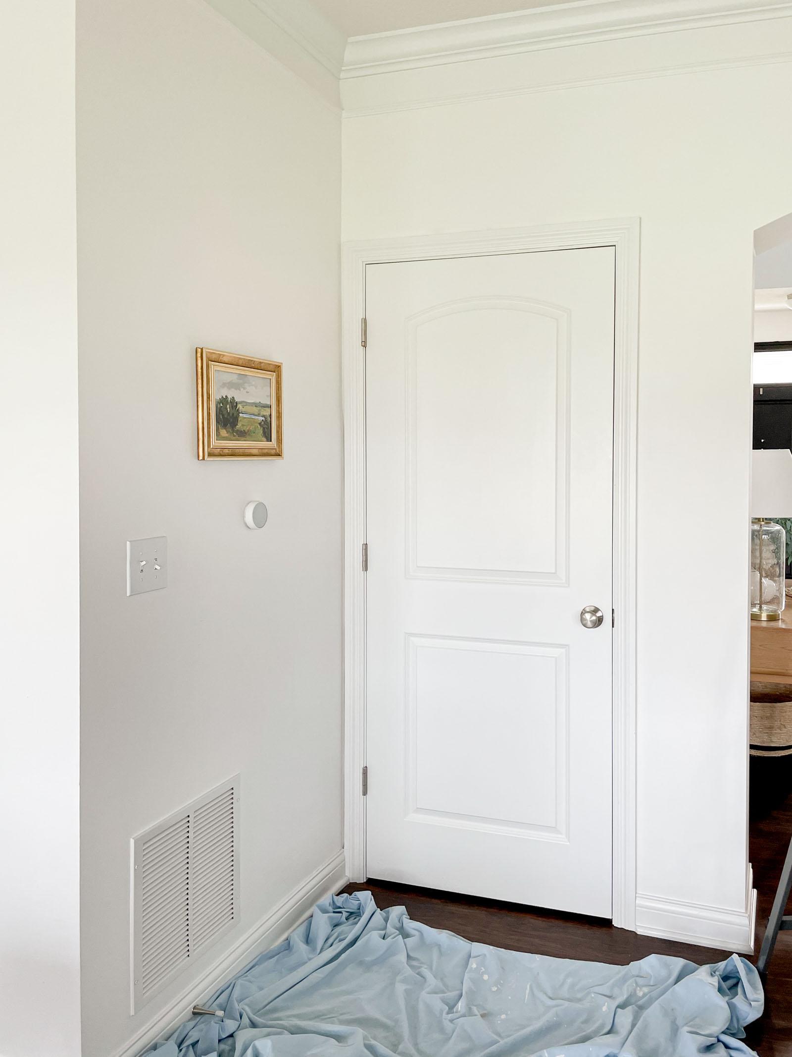 Unpainted white door