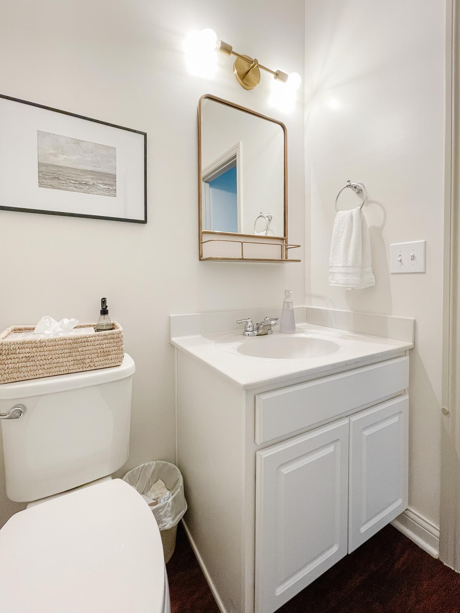Powder Room Before - pharmacy mirror, modern brass light fixture, white cabinetry and toilet
